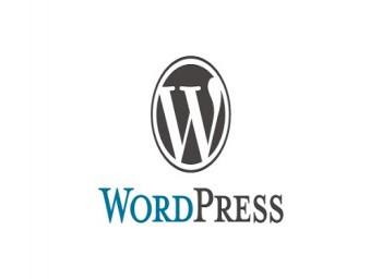 طراحی وبسایت با wordpress